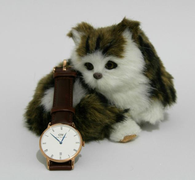 Relojes de Daniel Wellington
