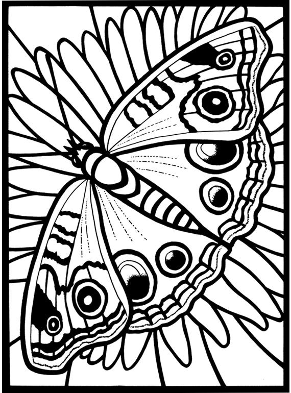 inkspired musings: Summer Butterflies