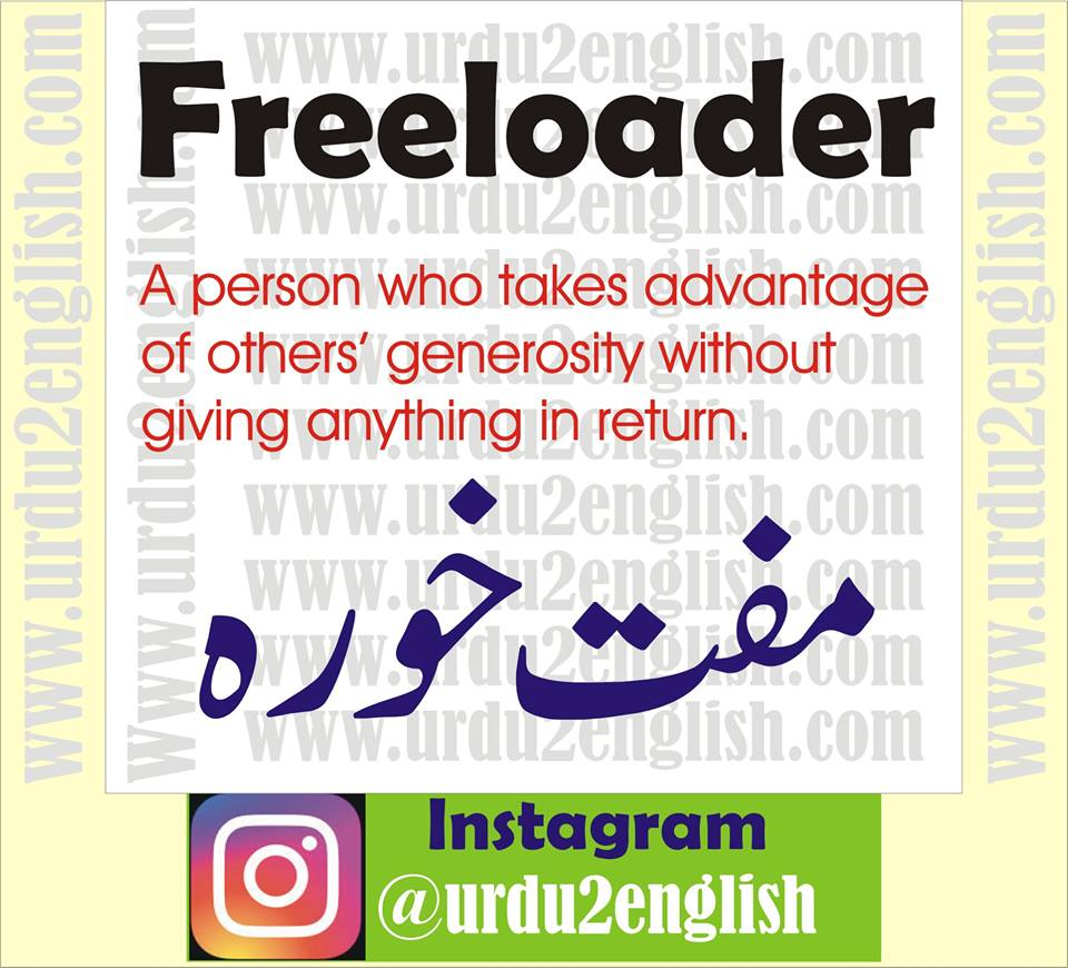 Try These Freeloader Meaning In Urdu {Mahindra Racing}