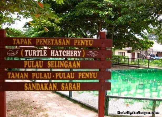 Taman Nasional Pulau Penyu