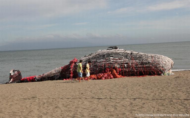 Escultura de uma baleia feita em plástico