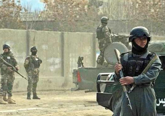 الكشف عن كميات كبيرة من الذخيرة والمتفجرات في محافظة هرات