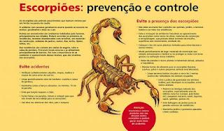 Equipe da Vigilância em Saúde de Miracatu recebem capacitação sobre controle e manejo de escorpiões