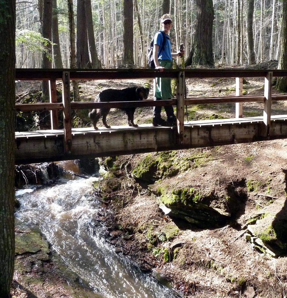 The Trail Mutt Reports: NCT Black River Falls Hike Near
