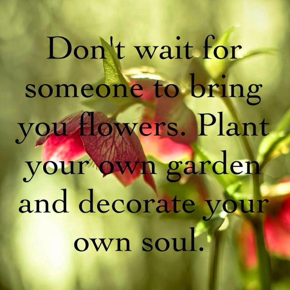 flower classroom: Plant your own garden....