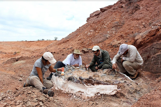Argentinian researchers discover an extraordinary 220 million year old animal cemetery in San Juan