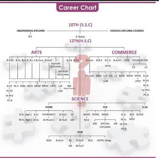 Commerce Career Chart Lewisburg District Umc