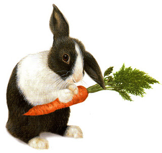 Is it true that carrots improve eyesight and prevent the rabbits go blind?