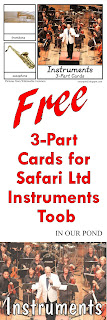 FREE 3-Part Cards for Safari Ltd Instruments Toob