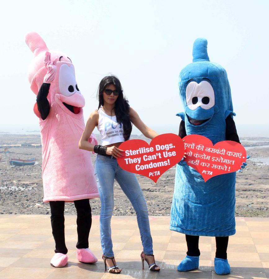 Sherlyn Chopra At Petas Safe Sex For Animals Campaign -5788