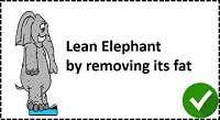 Elephant without fat in Lean Manufacturing