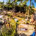 Café de La Musique Trancoso - Conheça o melhor Point da Bahia