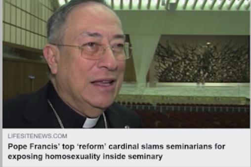https://www.lifesitenews.com/blogs/pope-francis-top-reform-cardinal-slams-seminarians-for-exposing-homosexuali