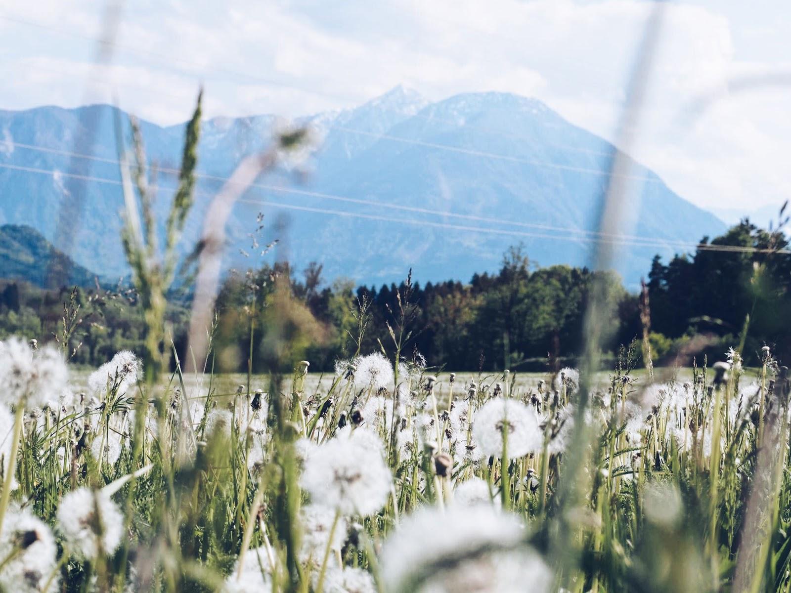 Tainach podróże góry Graz