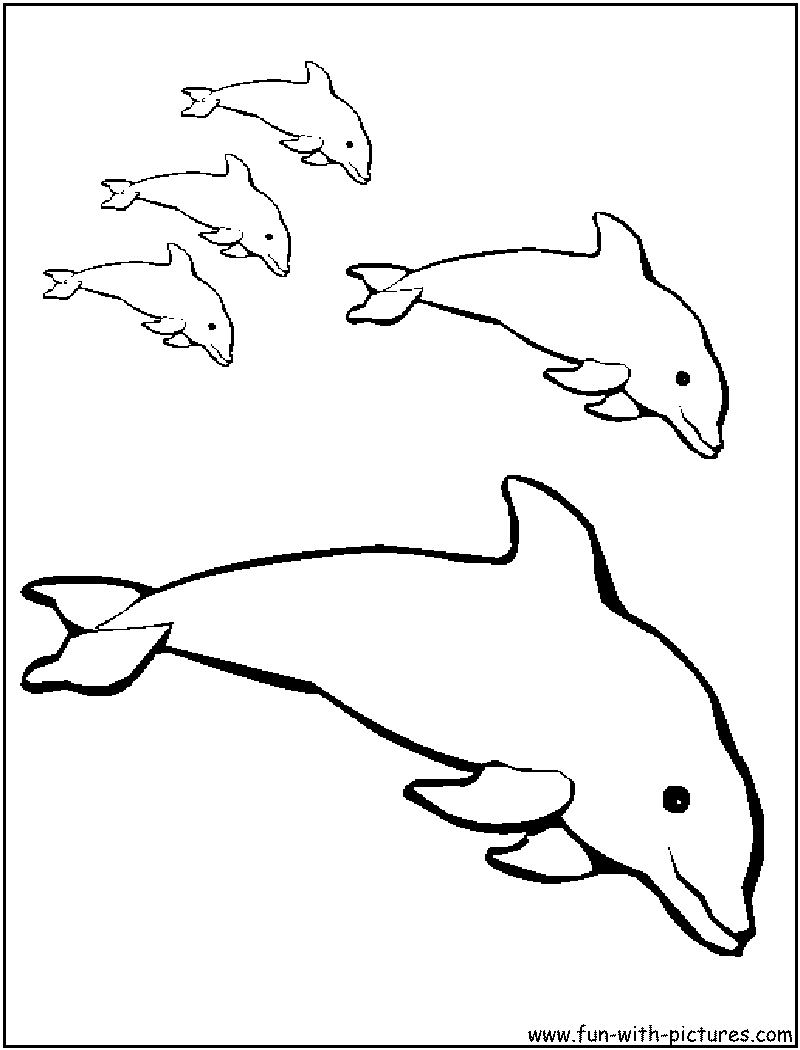 e coloring pages for dolphins - photo #16