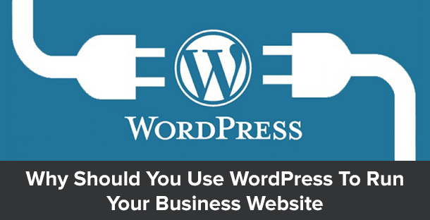 Why You Should Use WordPress To Run Your Business Website 1
