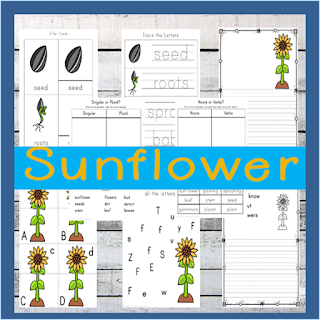 Sunflower Worksheet for Kids