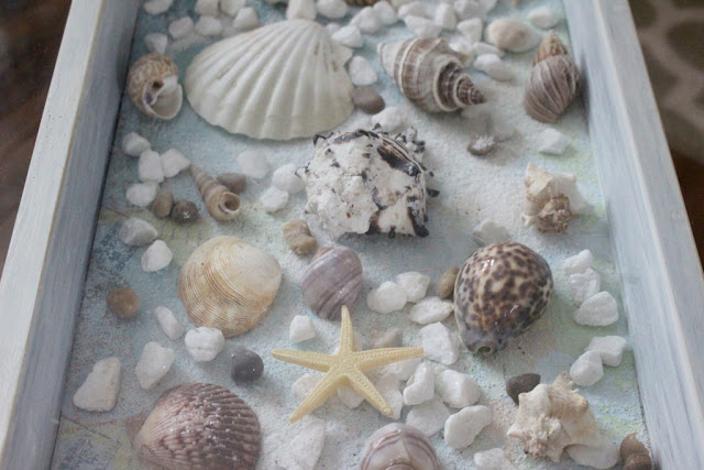 http://ourcraftymom.com/sea-shell-shadow-box-table/#comment-2891