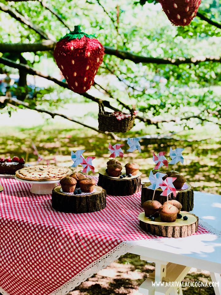 tavolo buffet compleanno picnic