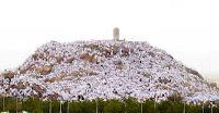 Arafat dağında vakfe yapan kalabalık hacı topluluğu