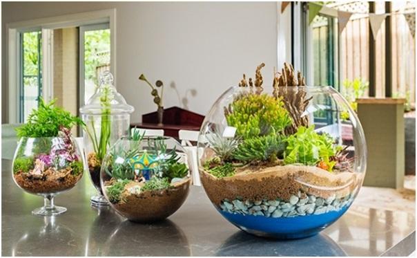 Teraryum mini bah e nas l yap l r en iyi hediye fikirleri for Ideas para hacer un jardin