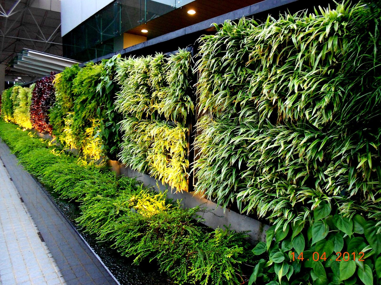Vertical Garden Concept For Buildings: Greenwall Vertical