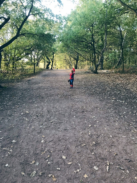 Little boy dressed as Spider-Man walking on a woodland path