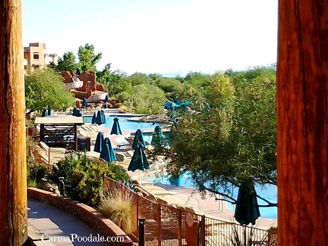 Pool view from Sheraton Wild horse pass