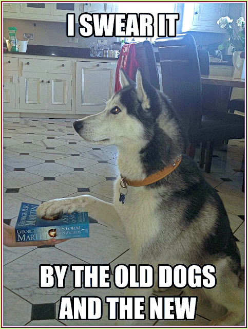 I swear it by the old dogs and the new. Husky swears by The Storm of Swords Novel. #funny #adorable #animals #dogs #funny #GOT #husky
