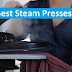 Top 6 Best Steam Presses Reviews