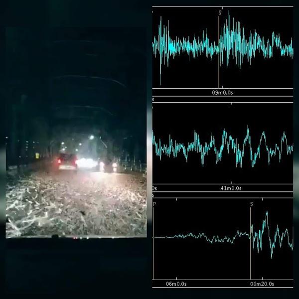 Plaga De Insectos , Enjambre Sismico En Japón. ¿Se Aproxima Fuerte Terremoto ?