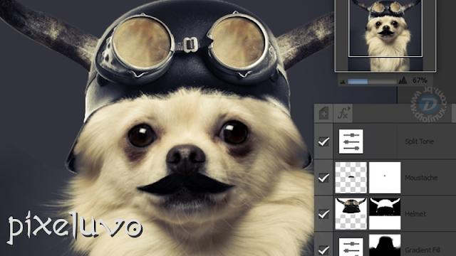 Pixeluvo editor de imagens