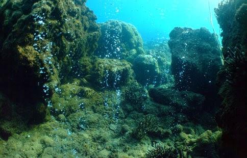 recife-de-coral-morto