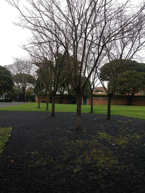 jardim da Casa das Histórias Paula Rego