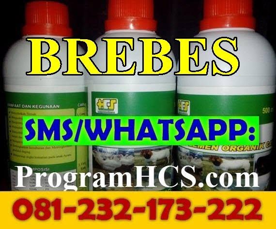 Jual SOC HCS losari Brebes