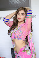 Actress Angela Krislinzki in Pink Saree Blouse Exclusive Pics March 2017 ~  051.JPG