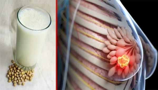 Things You MUST Know About Soy Milk