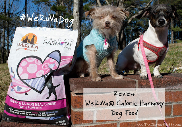 Review: WeRuVa® Caloric Harmony Dog Food #WeRuVaDog