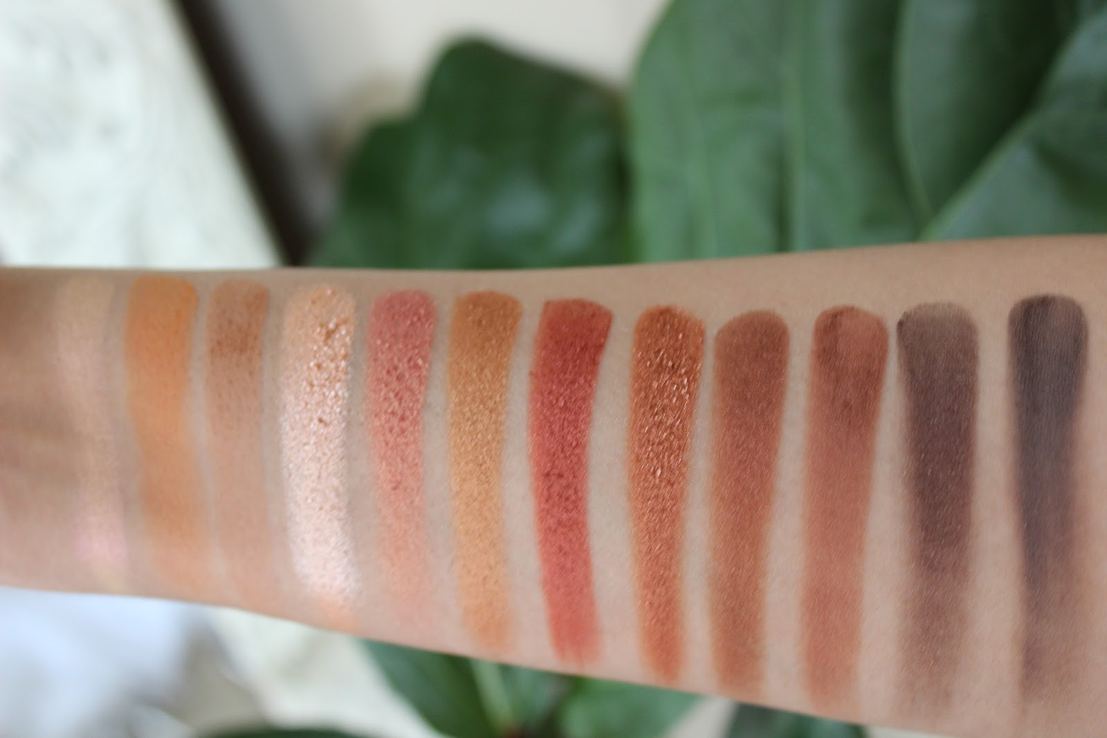 The Nubian Eyeshadow Palette by Juvia's Place #4