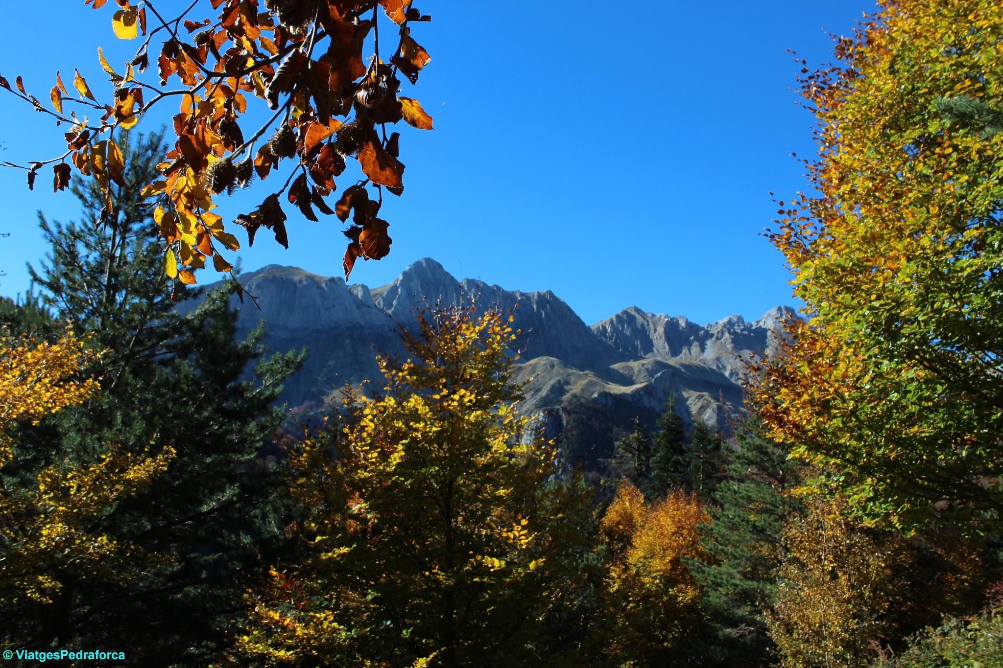 Pirineu Aragonès, Parque natural de los Valles Occidentales, colors de tardor, senderisme
