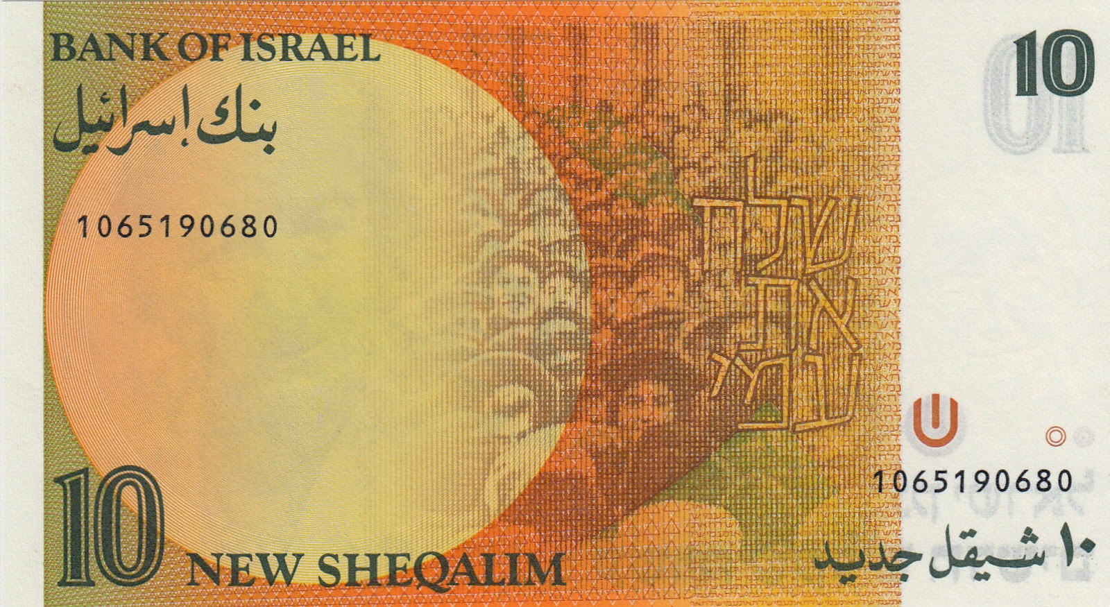 Israeli currency money 10 New Shekels banknote 1992 Bank of Israel
