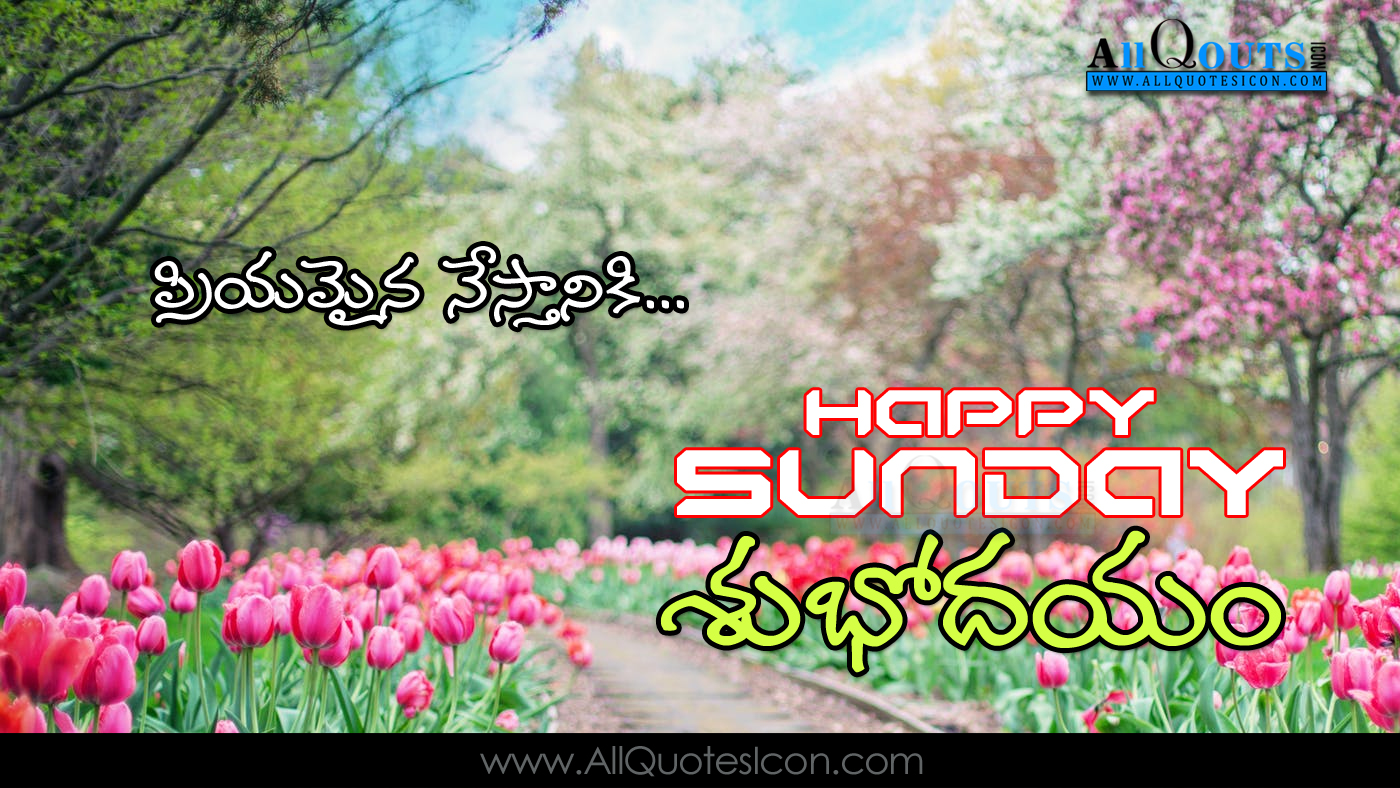 Happy Sunday Images Telugu Good Morning Quotes Greetings For Friends