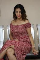 Diksha Panth in a Deep neck Short dress at Maya Mall pre release function ~ Celebrities Exclusive Galleries 058.JPG