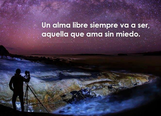 Frases Famosas Un Alma Libre Siempre Va A Ser Aquella Que