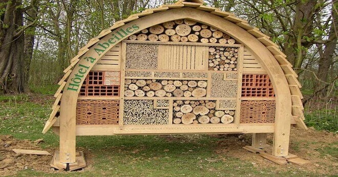 How To Build Bee Hotels To Help Save Native Bees