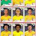 Brazil World Cup Team