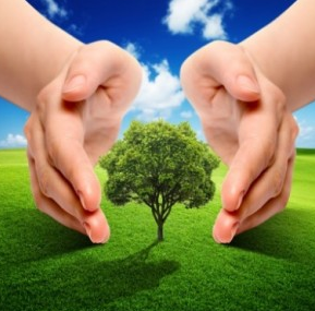 Kesehatan Lingkungan