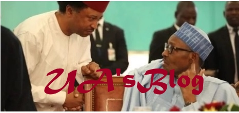 Buhari's Exit From Power Is The End Of APC - Senator Shehu Sani