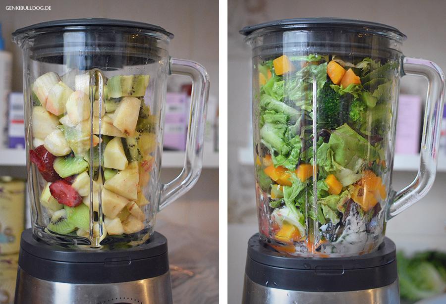 Barf Hundefutter Rationen portionieren Obst und Gemüse pürieren