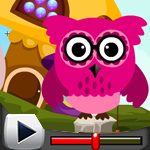 G4K Pink Owl Rescue 3 Game Walkthrough